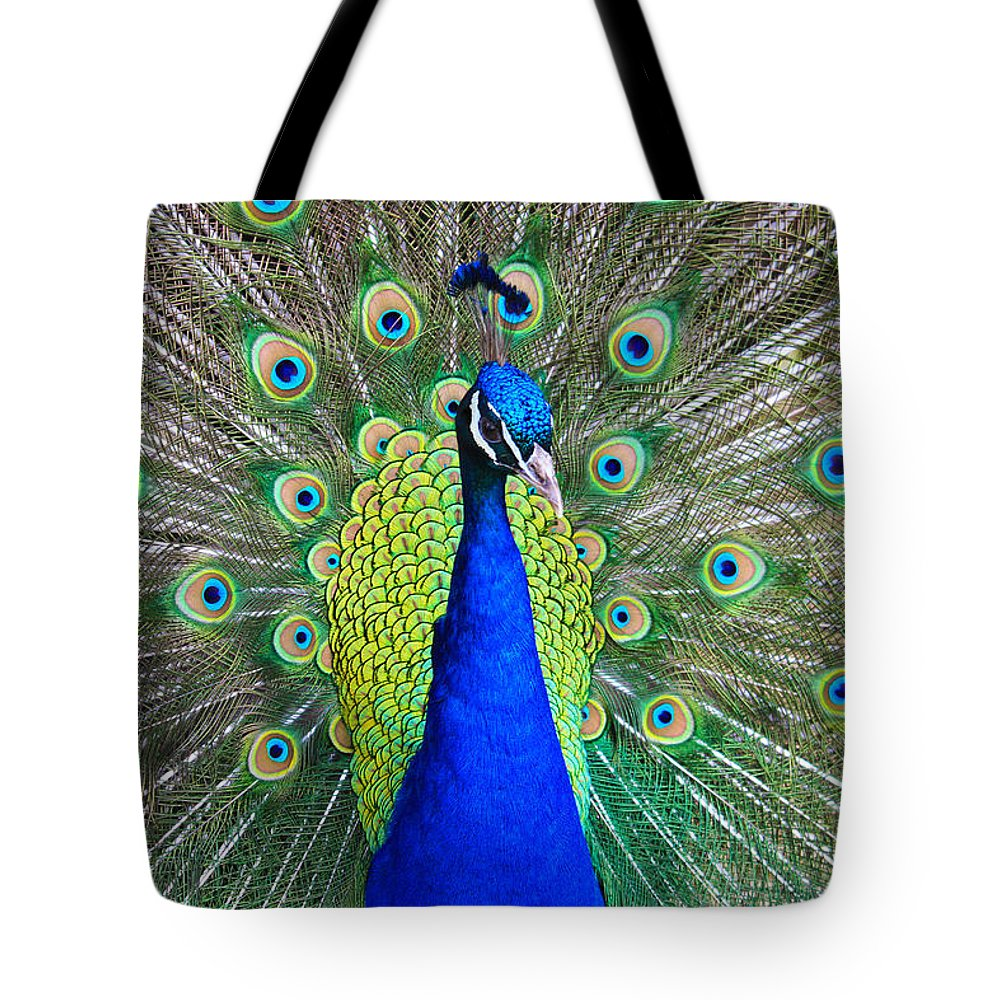 Birds Tote Bag featuring the photograph Peacock by Roger Becker
