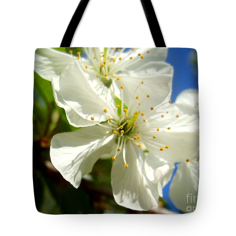 Blossom Tote Bag featuring the photograph Pear Blossom by Nina Ficur Feenan