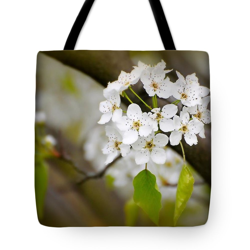 Flowers Tote Bag featuring the photograph Pear Blossoms by Diana Angstadt