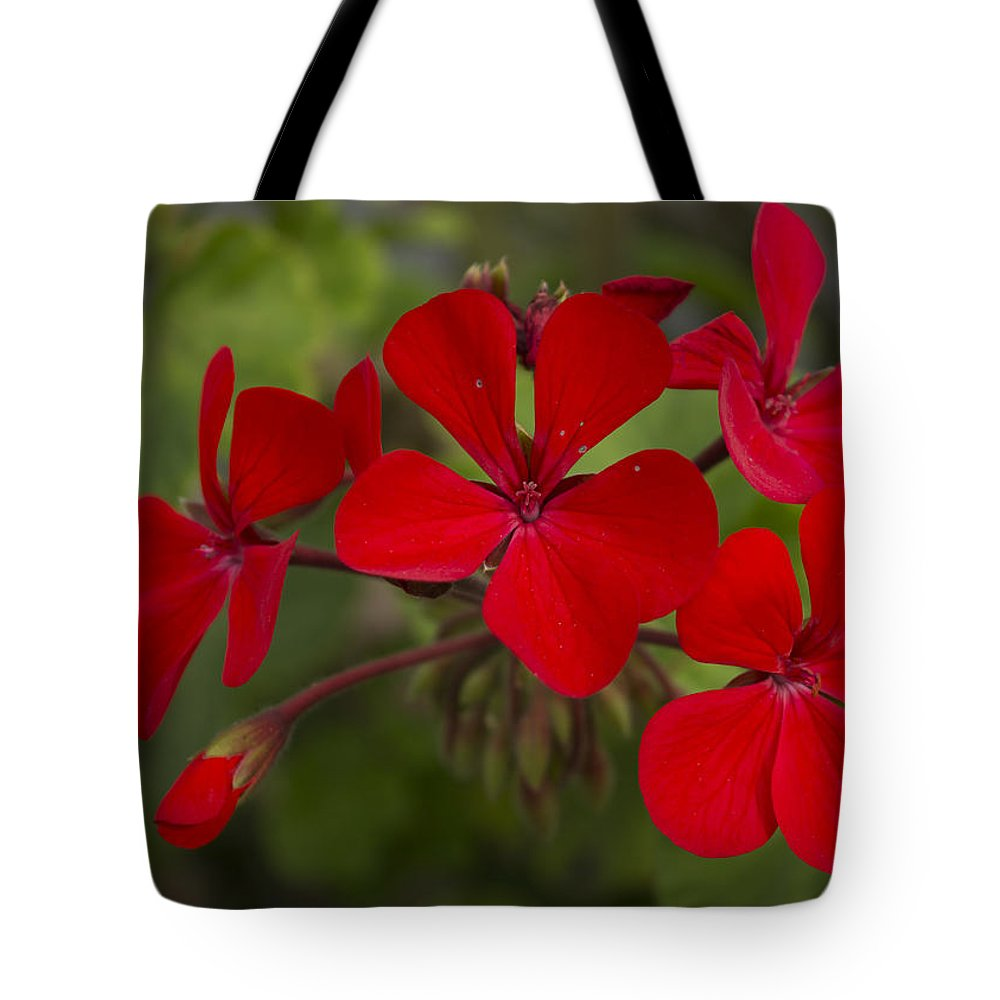 Flowers Tote Bag featuring the photograph Pelargonium by Bruce Frye