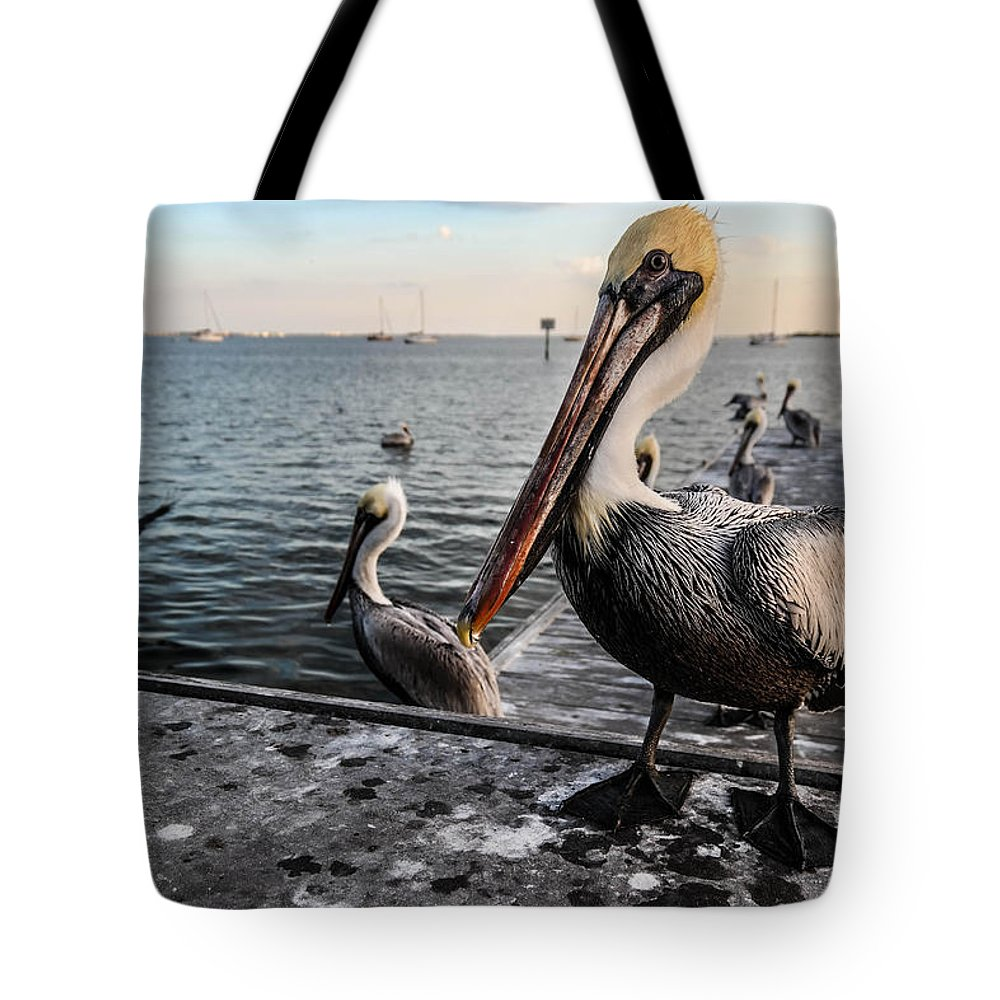Pelican Tote Bag featuring the photograph Pelican At The Pier by Tammy Lee Bradley