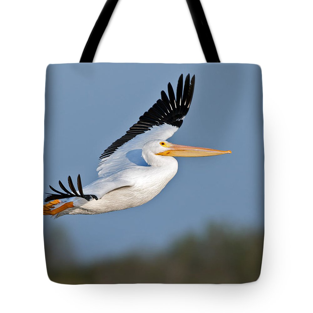 Pelican Tote Bag featuring the photograph Pelican Flight by Gary Langley