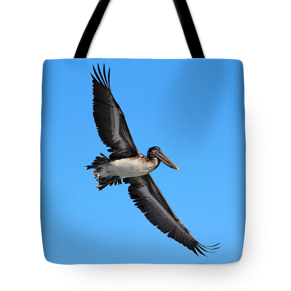 Pelican Tote Bag featuring the photograph Pelican Flying High by Cynthia Guinn