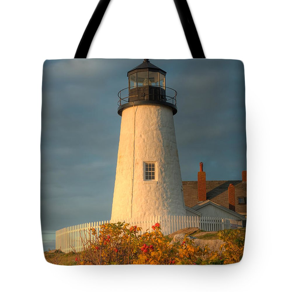 Clarence Holmes Tote Bag featuring the photograph Pemaquid Point Light IIi by Clarence Holmes