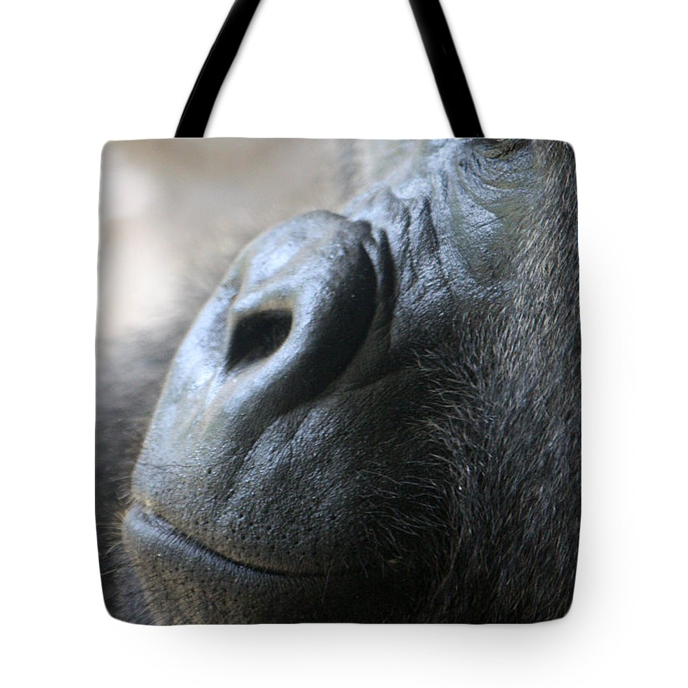 Busch Gardens Tote Bag featuring the photograph Penny For Your Thoughts by David Nicholls