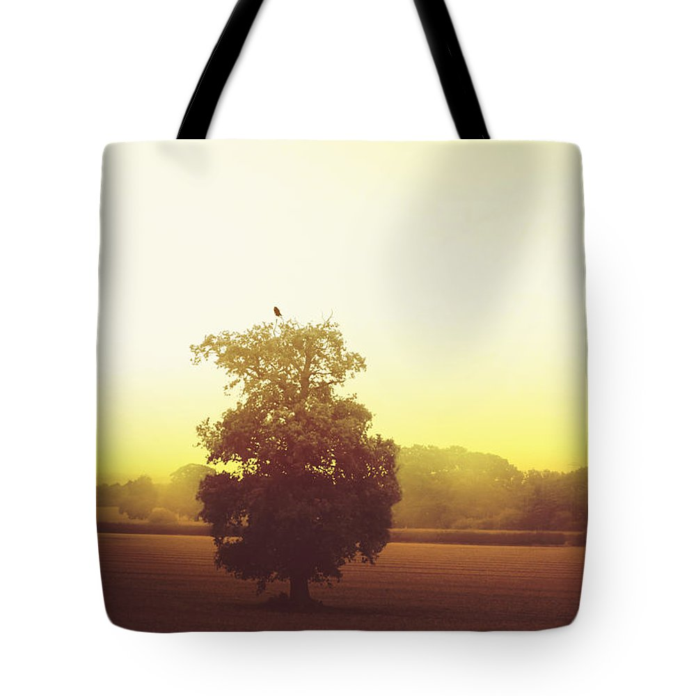 Tree Tote Bag featuring the photograph Perched On Top by Margie Hurwich