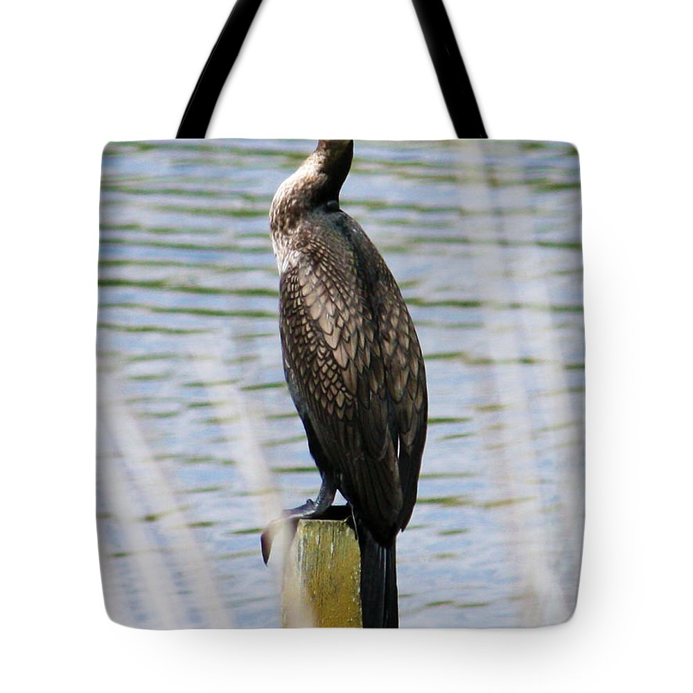 Bird Tote Bag featuring the photograph Perching Cormorant by Terri Waters