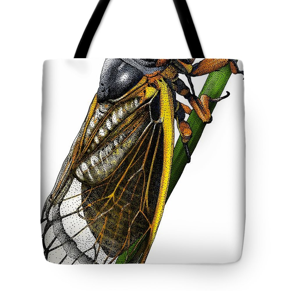 Animal Tote Bag featuring the photograph Periodical Cicada by Roger Hall