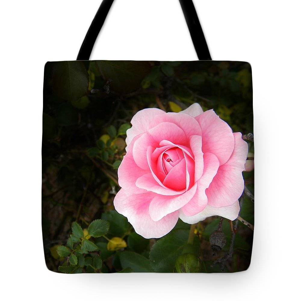 Springtime Tote Bag featuring the photograph Personally Pink by Matthew Seufer
