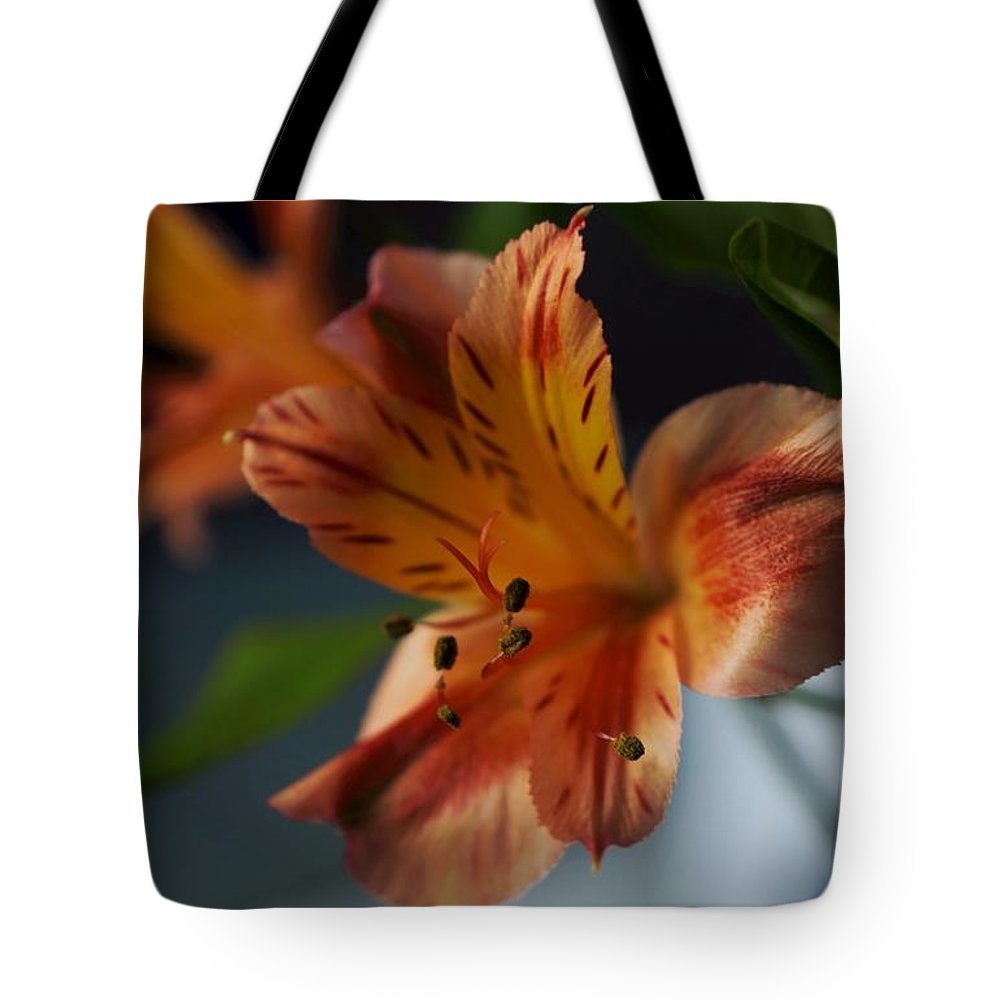 Matt Matekovic Tote Bag featuring the photograph Peruvian Lily by Photographic Arts And Design Studio