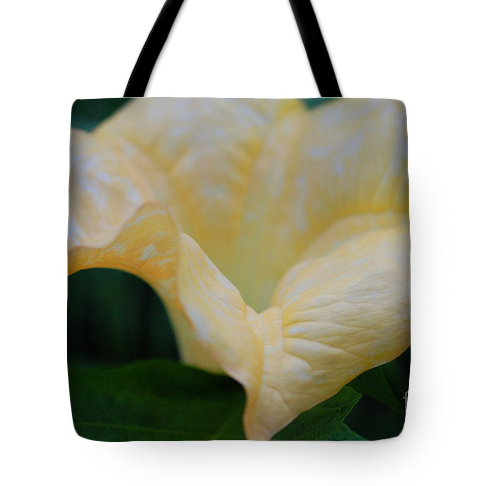 First Star Art Tote Bag featuring the photograph Petal Pillows By Jrr by First Star Art