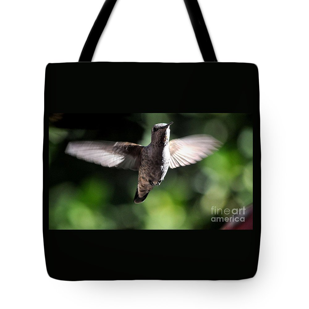 Hummingbird Tote Bag featuring the photograph Peter Pan-i'm Flying by Jay Milo