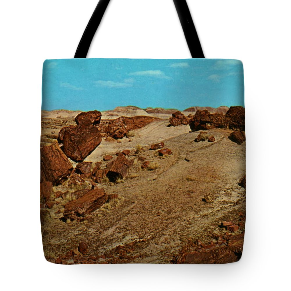 Petrified Forest National Park Tote Bag featuring the photograph Petrified Forest National Park by Ruth Housley
