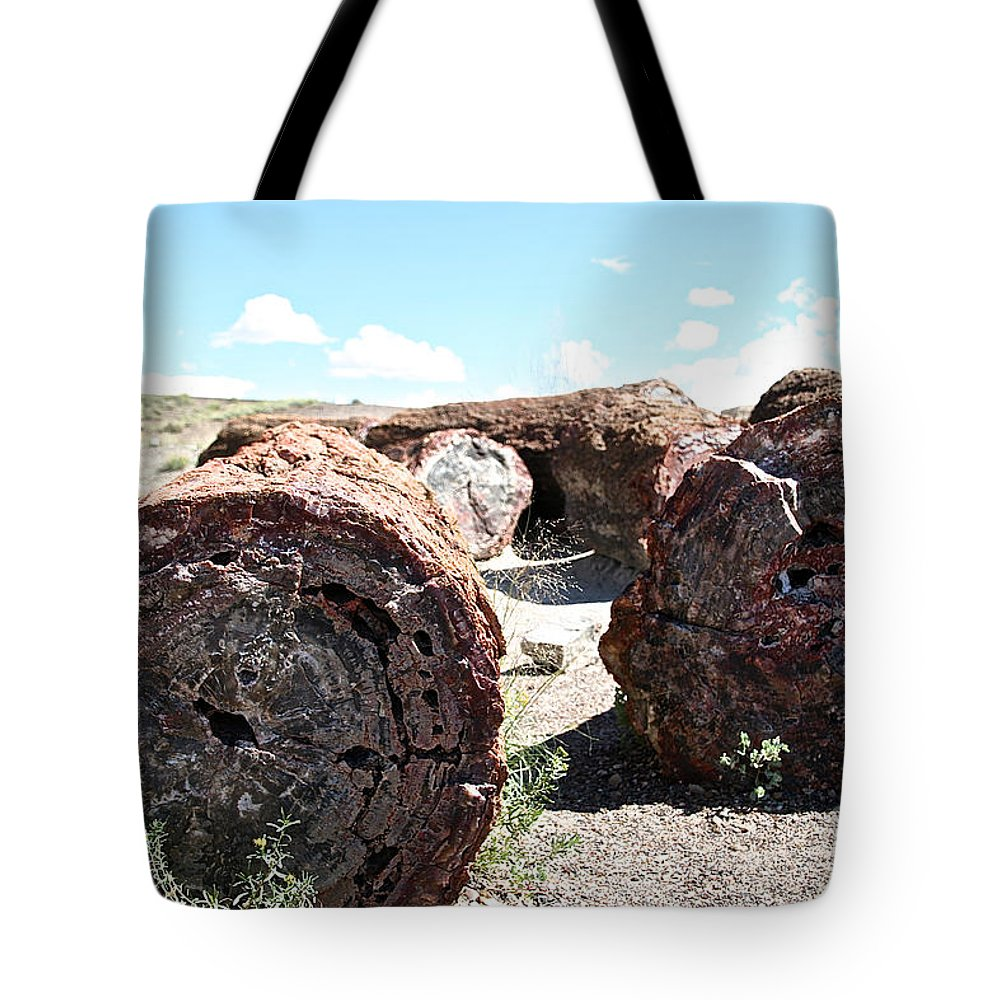 Outdoors Tote Bag featuring the photograph Petrified Timber by Susan Herber