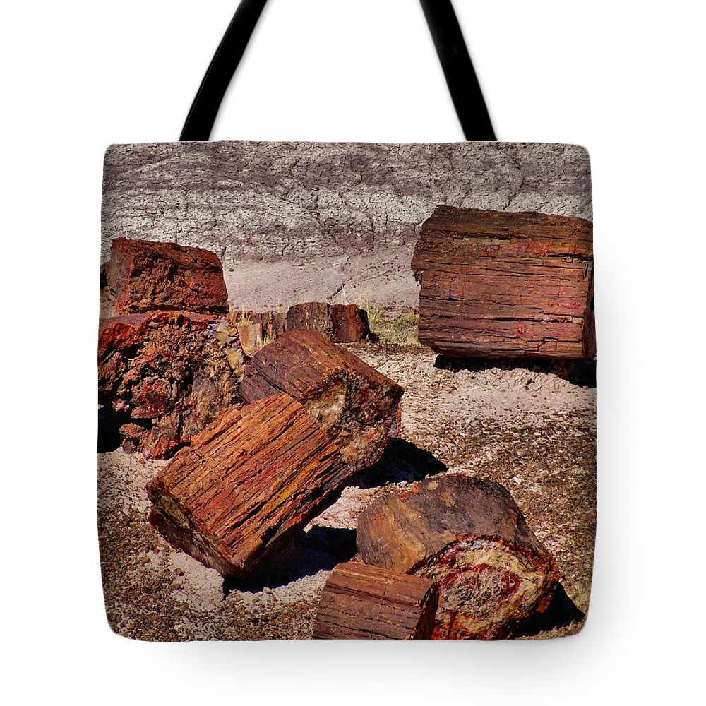Petrified Forest National Park Tote Bag featuring the photograph Petrified Wood by Dan Sproul