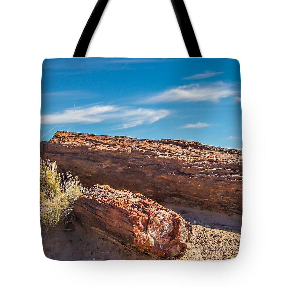 Landscape Tote Bag featuring the photograph Petrified Wood by Marc Crumpler