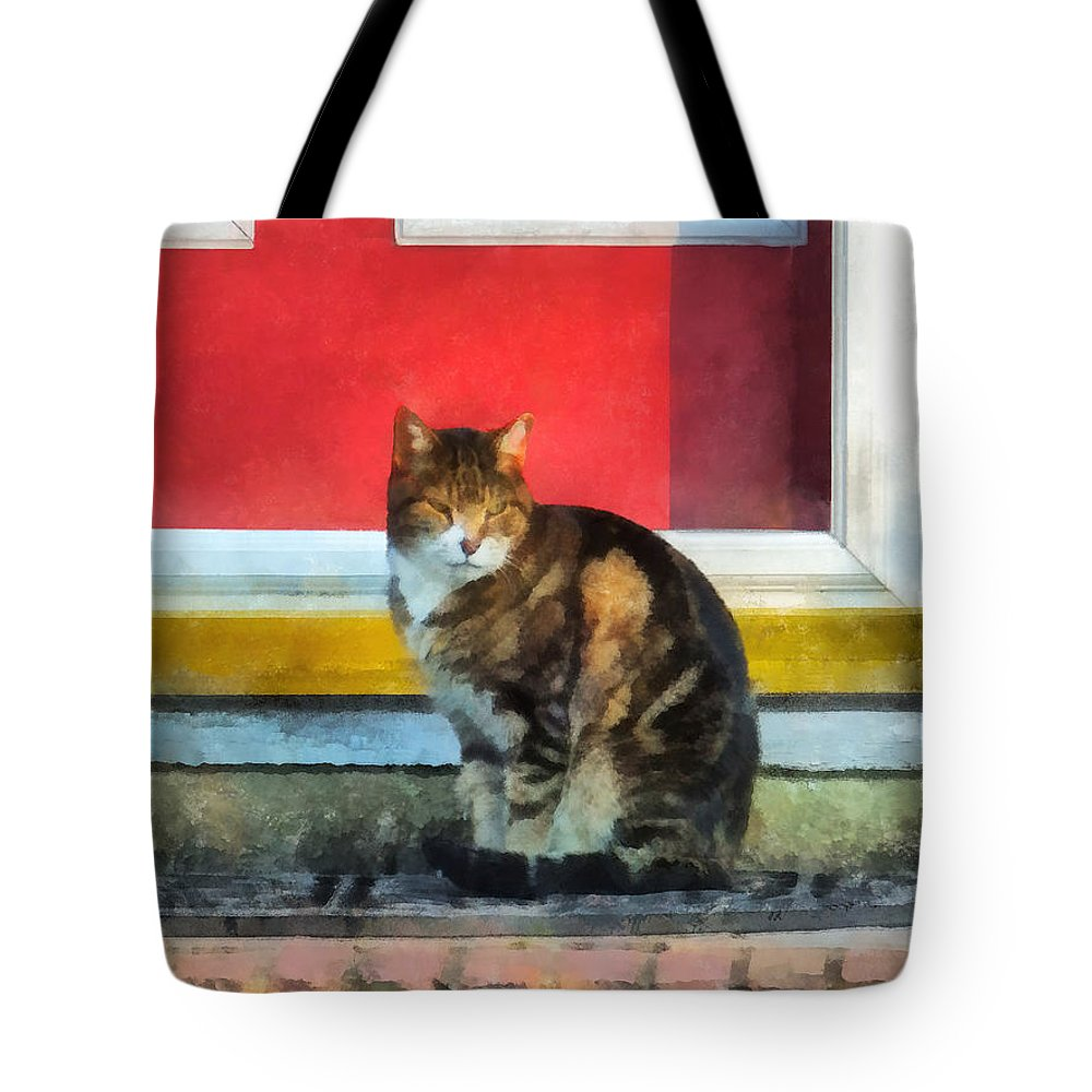 Cat Tote Bag featuring the photograph Pets - Tabby Cat By Red Door by Susan Savad