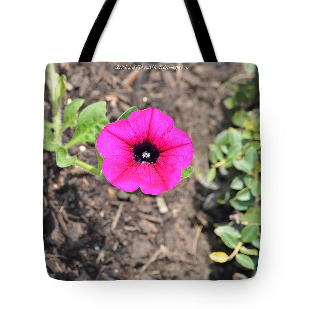 Petunia Tote Bag featuring the photograph Petun by Sonali Gangane