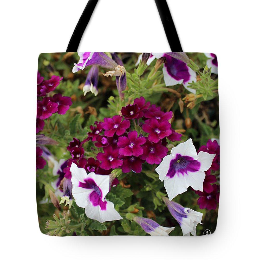 Petunia Tote Bag featuring the photograph Petunias And Verbena I by Sylvia Thornton
