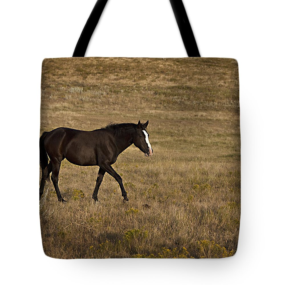 Horse Tote Bag featuring the photograph Phantom by Jack Milchanowski