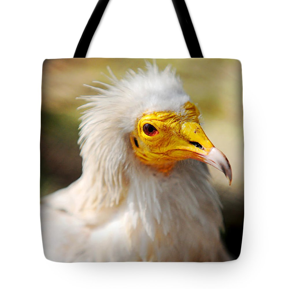 Bird Tote Bag featuring the photograph Pharaoh Chicken. Egyptian Vulture by Jenny Rainbow