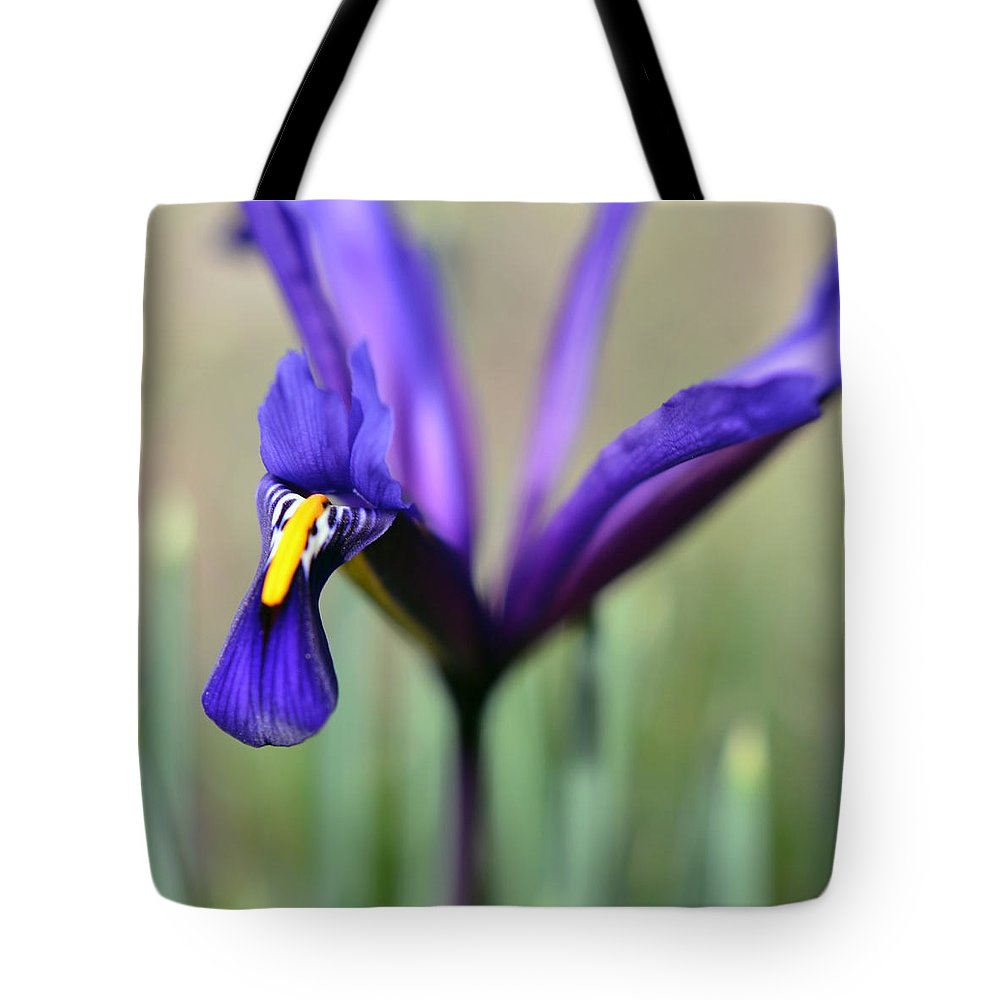 Photography Tote Bag featuring the photograph Phoenix by Sebastiano Secondi