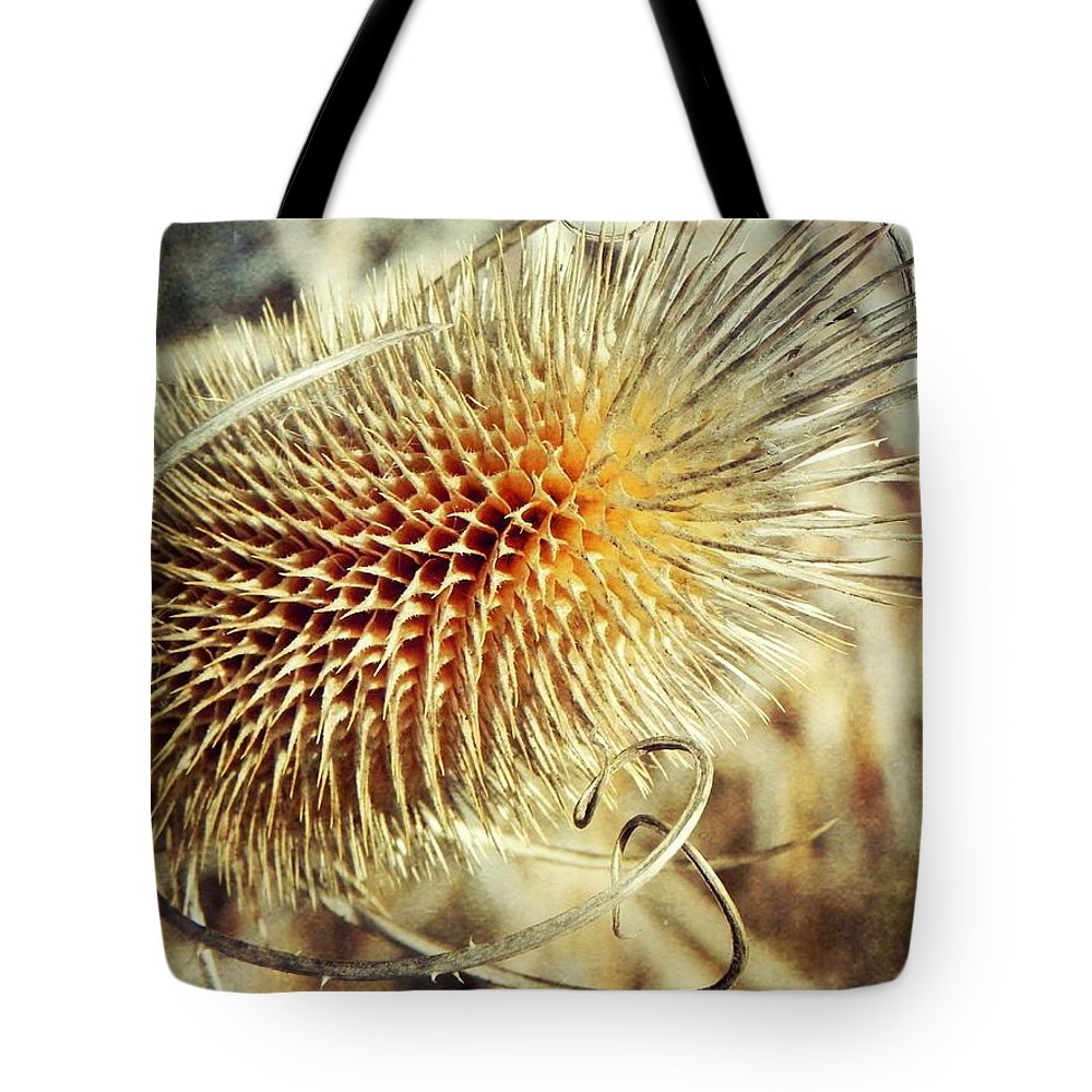 Forest Tote Bag featuring the photograph Pickly by Leah Moore
