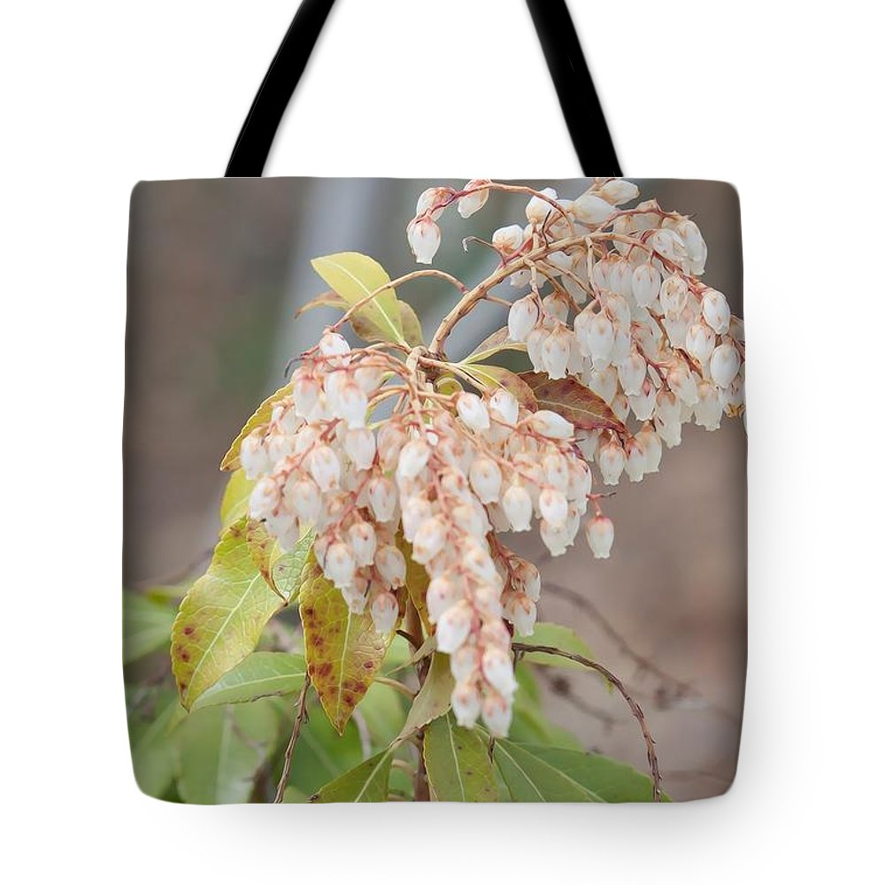Pieris Japonica 'dorothy Wycoff' Andromeda Tote Bag featuring the photograph Pieris Japonica 'dorothy Wycoff' Andromeda by Liane Wright