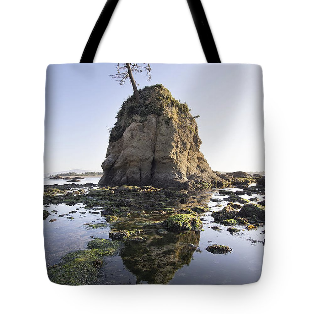 Pig Tote Bag featuring the photograph Pig And Sows Rock In Garibaldi Oregon At Low Tide by Jit Lim