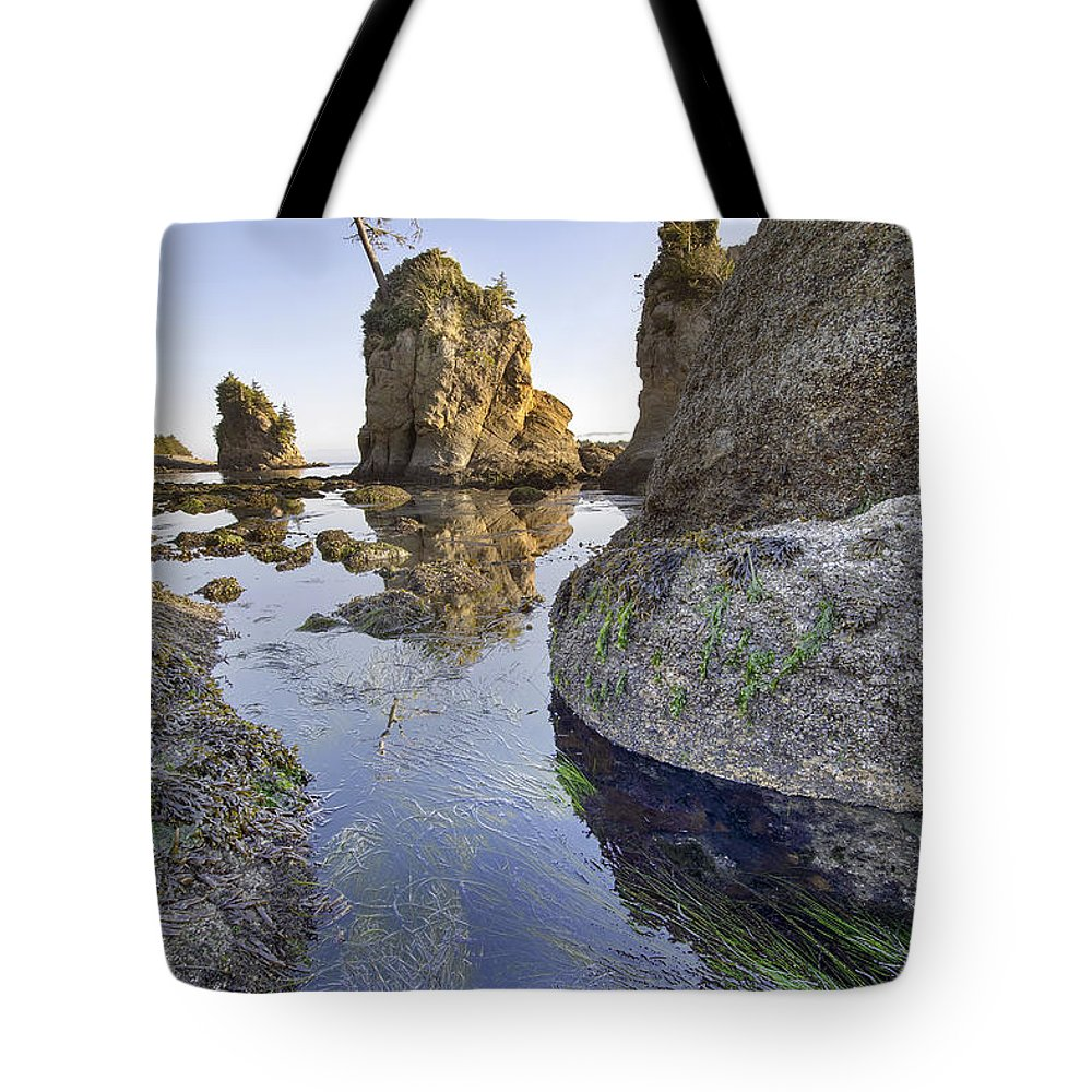 Pig Tote Bag featuring the photograph Pig And Sows Rock In Garibaldi Oregon At Low Tide Vertical by Jit Lim