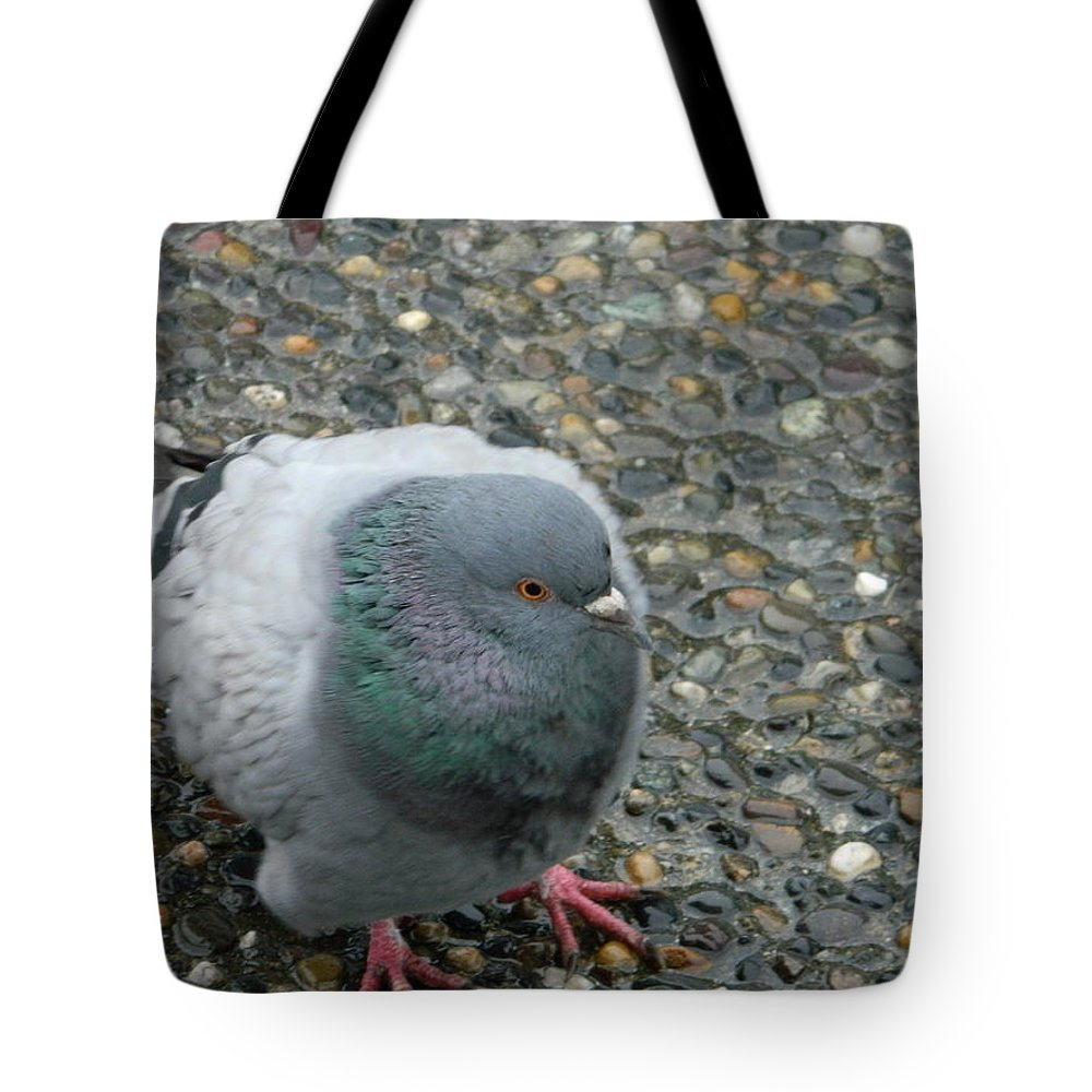 Pigeon Tote Bag featuring the photograph Pigeon by Nicki Bennett
