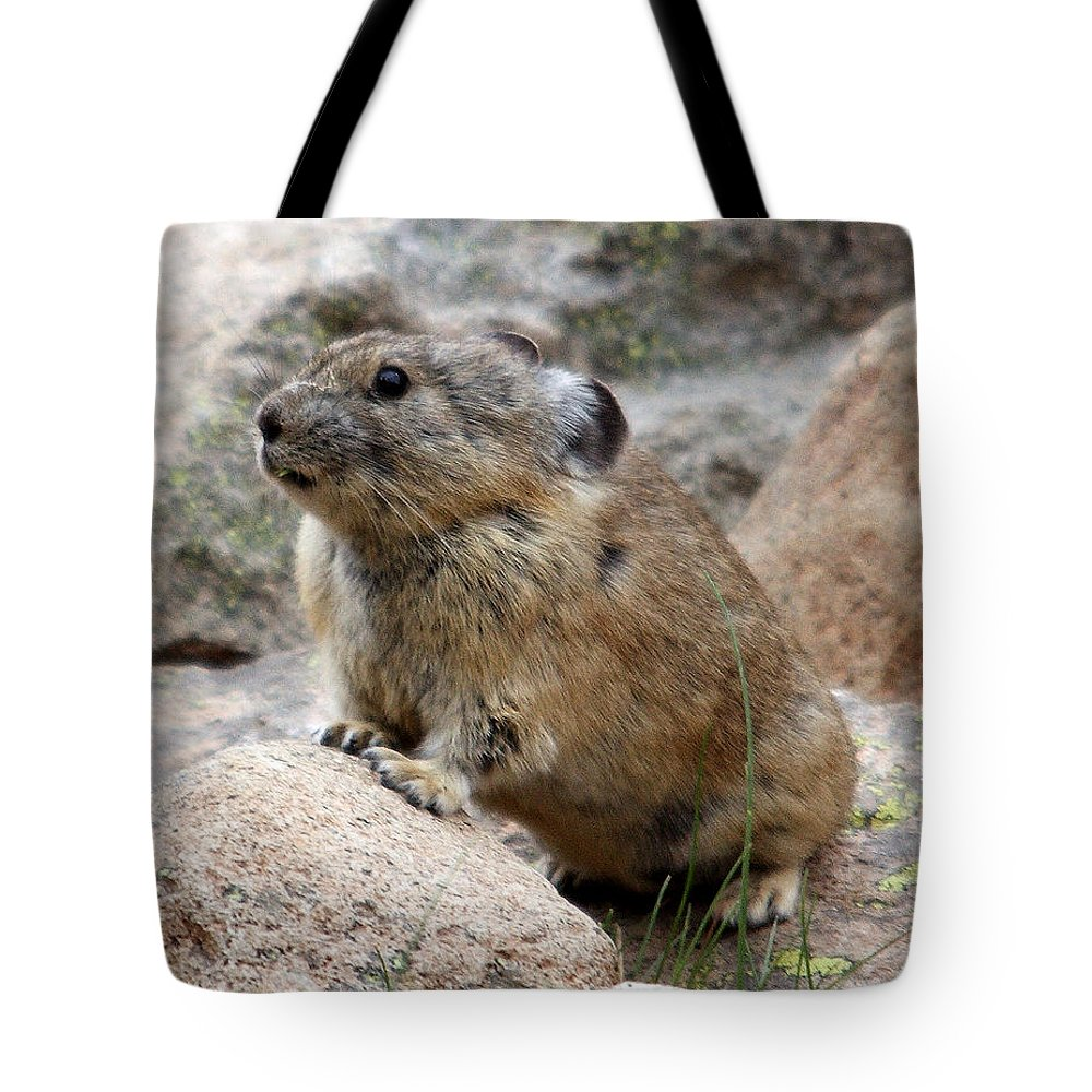 Nature Tote Bag featuring the photograph Pika by David Salter