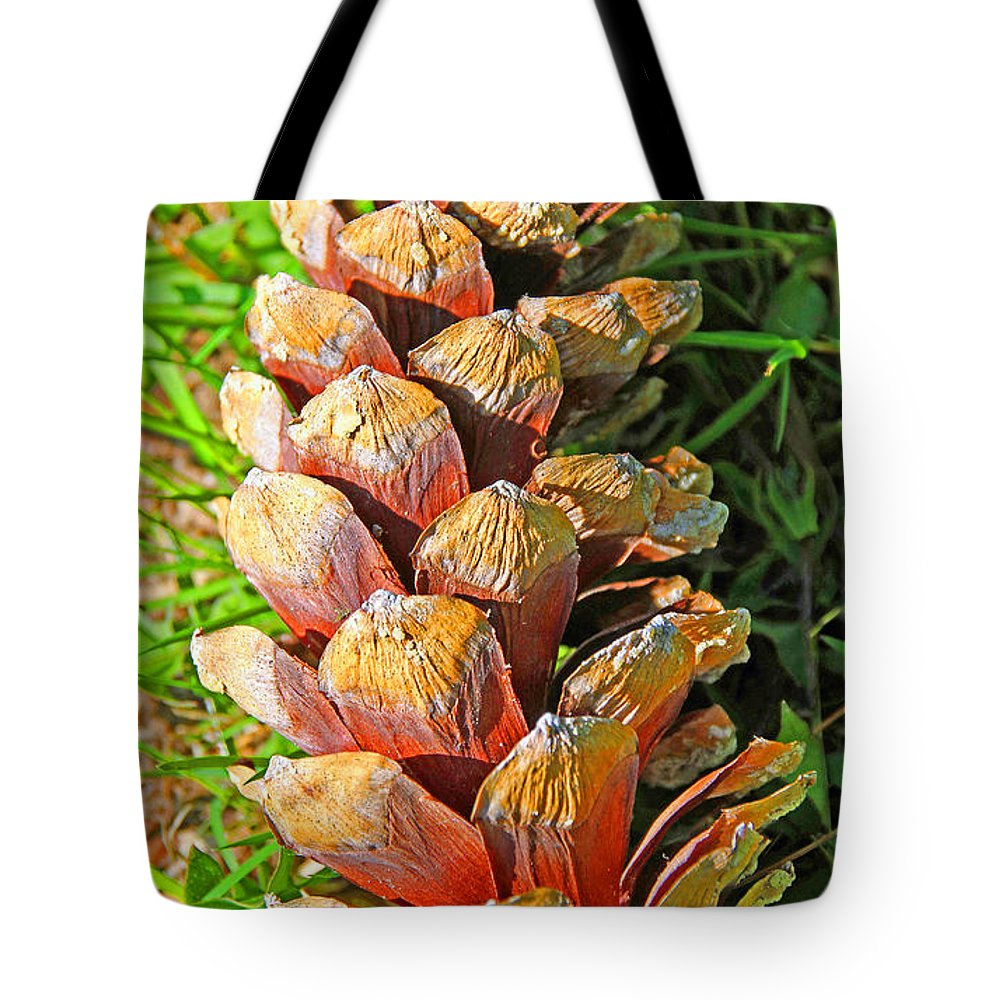 Pine Cone Tote Bag featuring the photograph Pine Cone by Alain Michiels