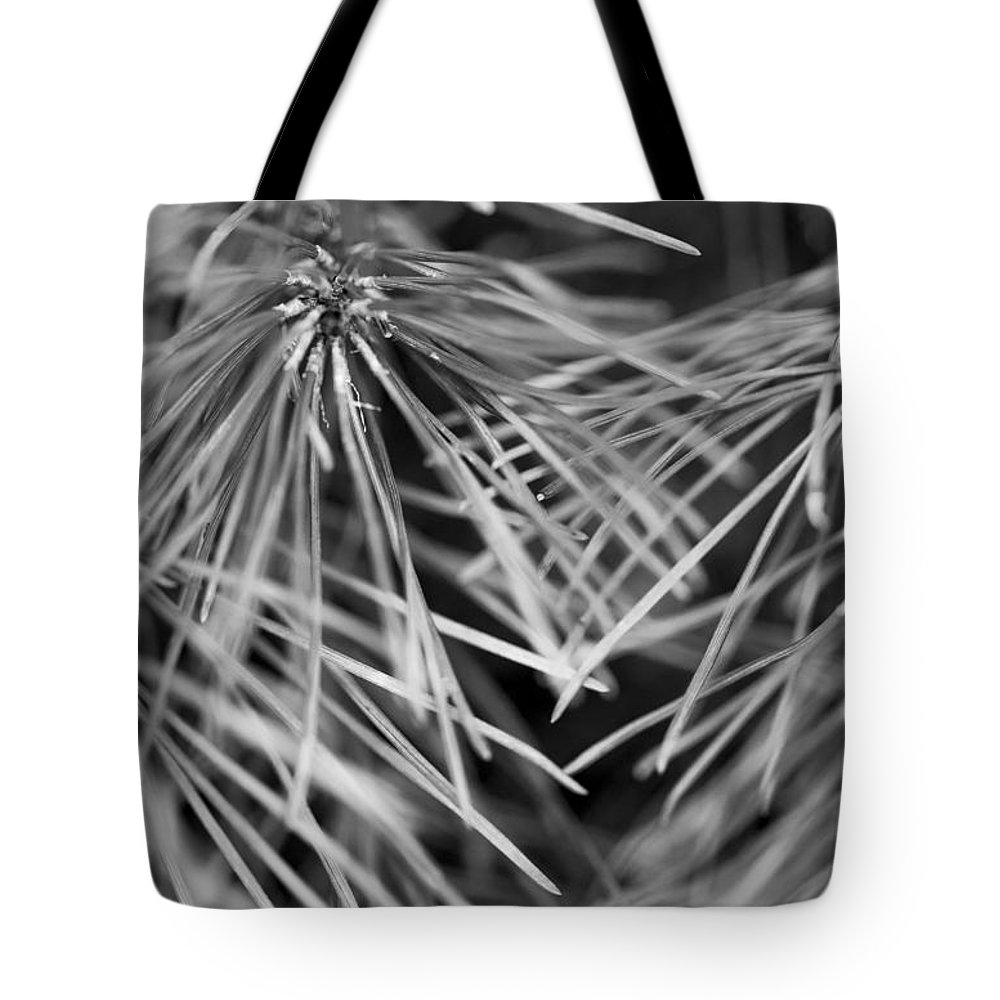 Pine Needles Tote Bag featuring the photograph Pine Needle Abstract by Susan Stone