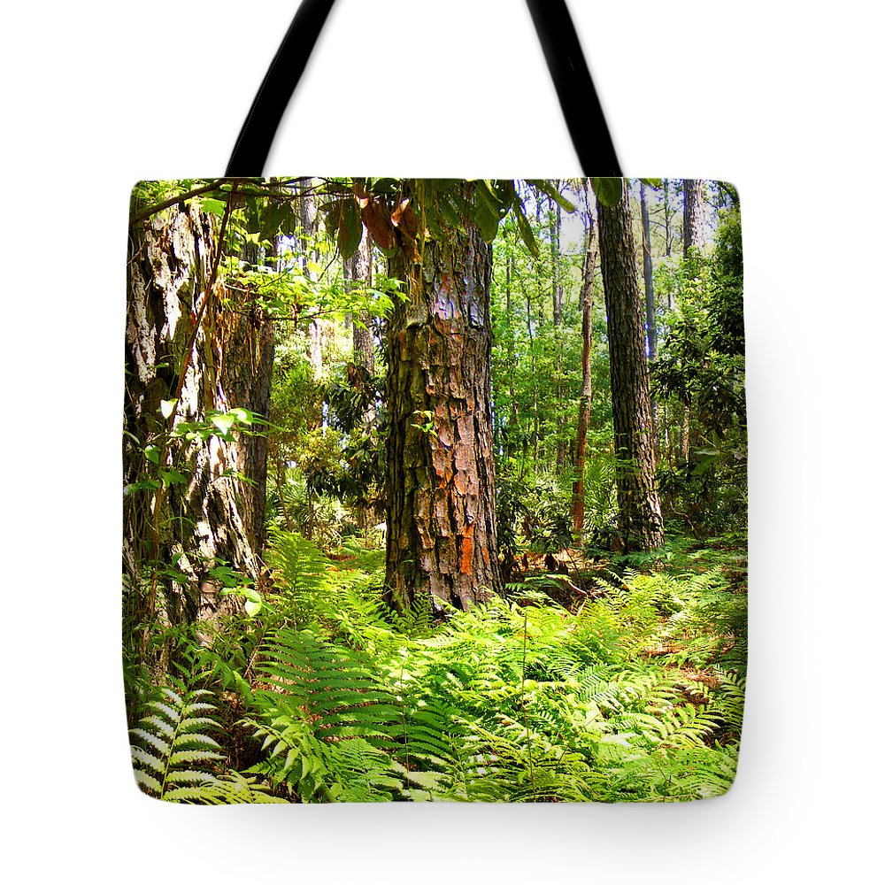 Plants Tote Bag featuring the photograph Pine Trees And Ferns by Duane McCullough