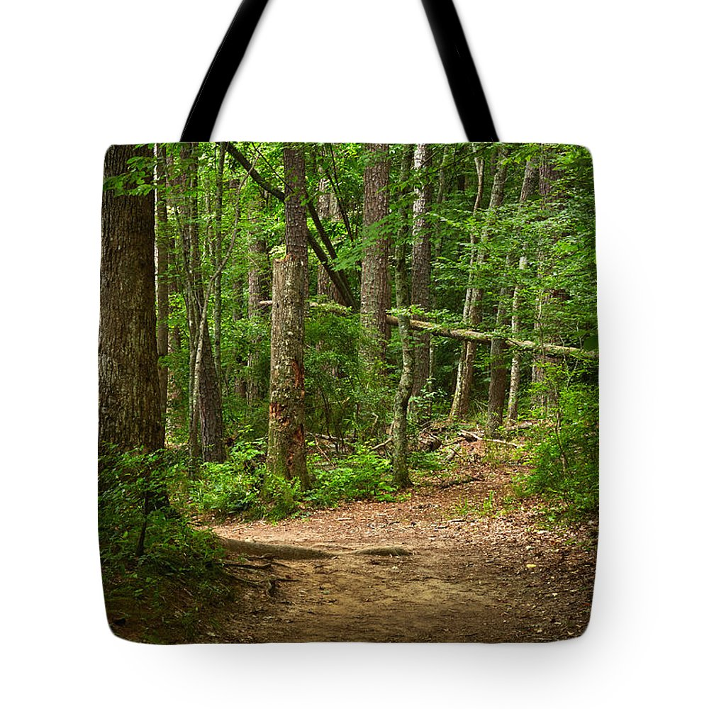Landscapes Tote Bag featuring the photograph Pinewood Path by Matthew Pace