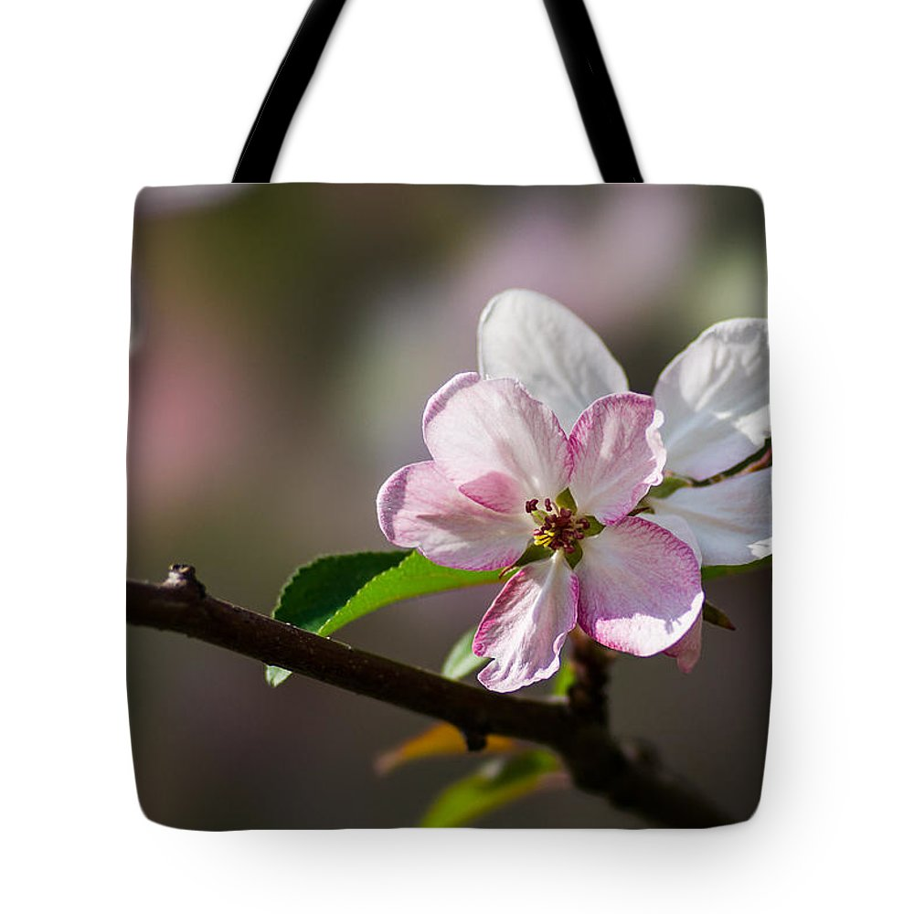 Featured Tote Bag featuring the photograph Pink Apple Blossom by Alexander Senin