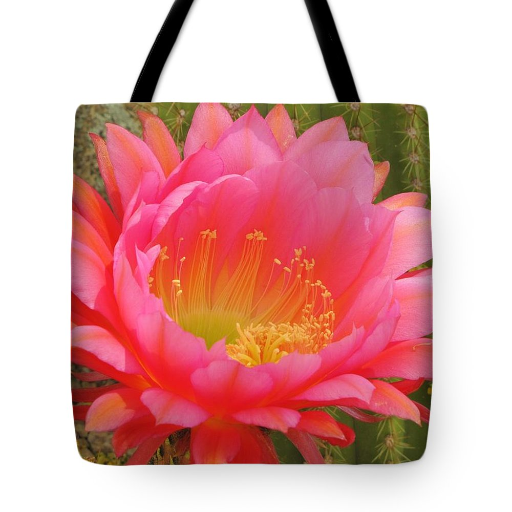 Cactus Flower Tote Bag featuring the photograph Pink Cactus Flower Of The Southwest by Michelle Cassella