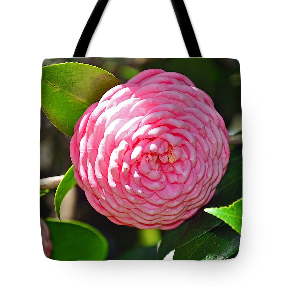 Floral Tote Bag featuring the photograph Pink Camellia by Deborah Good