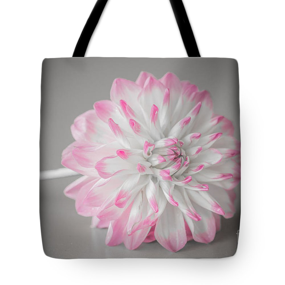 Flower Tote Bag featuring the photograph Pink Dahlia by Amanda Mohler