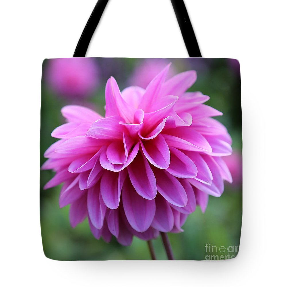 Pink Tote Bag featuring the photograph Pink Dahlia Closeup by Carol Groenen