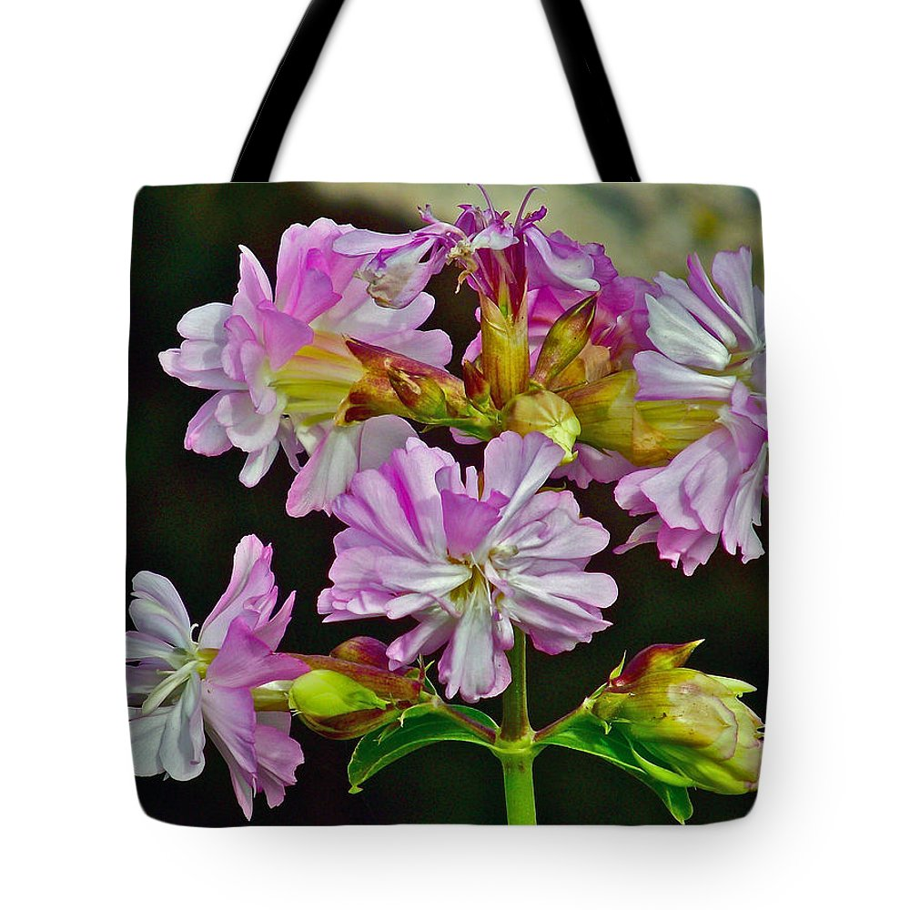 Pink Flower On Brier Island In Digby Neck Tote Bag featuring the photograph Pink Flower On Brier Island In Digby Neck-ns by Ruth Hager
