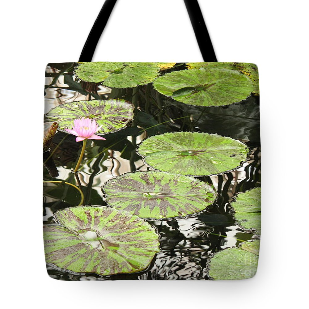 Pond Tote Bag featuring the photograph One Pink Water Lily With Lily Pads by Carol Groenen
