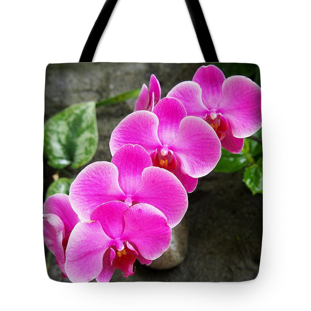 Nature Tote Bag featuring the photograph Pink Fuchsia Tropical Orchid Flowers In The Garden by Amy McDaniel