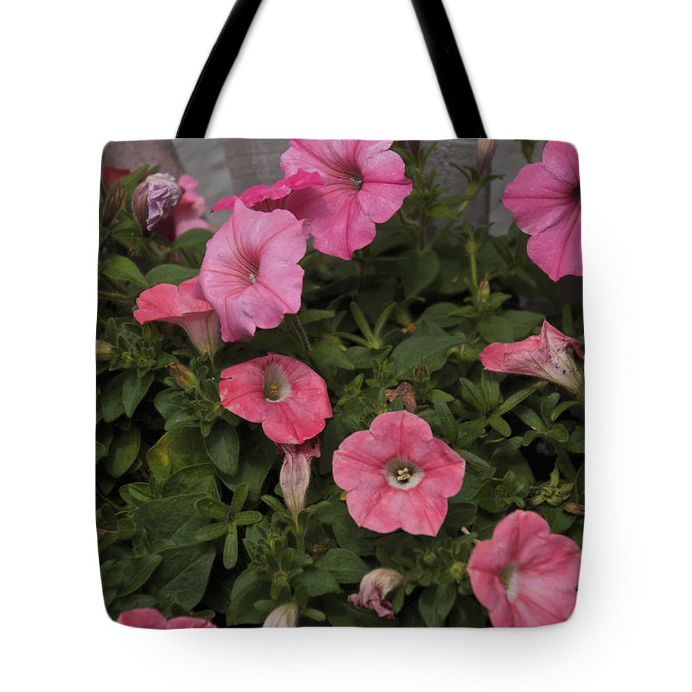 Pink Tote Bag featuring the photograph Pink Gathering by William Norton