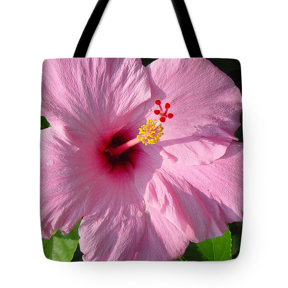 Pink Hibiscus Tote Bag featuring the photograph Pink Hibiscus by Suzanne Gaff