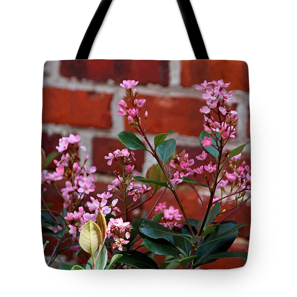 Digital Art Tote Bag featuring the photograph Pink Indian Hawthorne by Suzanne Gaff