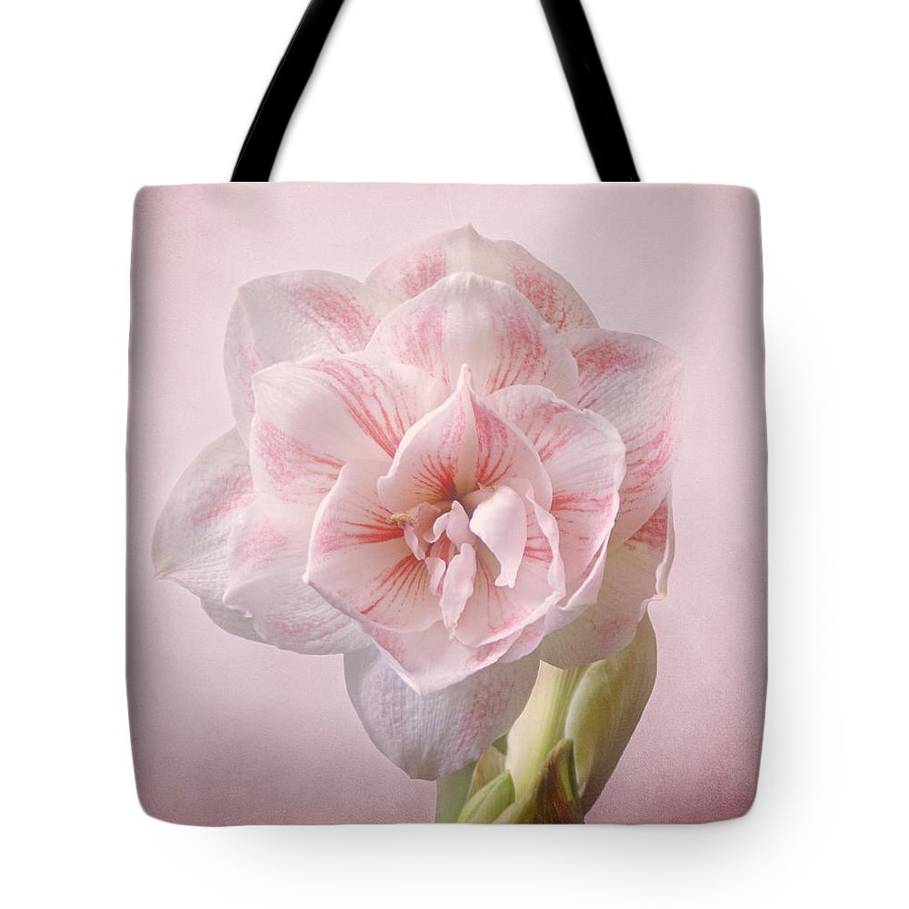 Amaryllis Tote Bag featuring the photograph Pink Nymph Amaryllis by Sandy Keeton