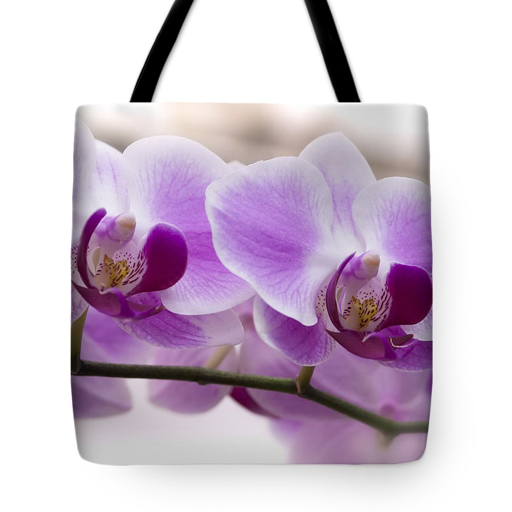 Pink Orchid Tote Bag featuring the photograph Pink Orchid by Saija Lehtonen