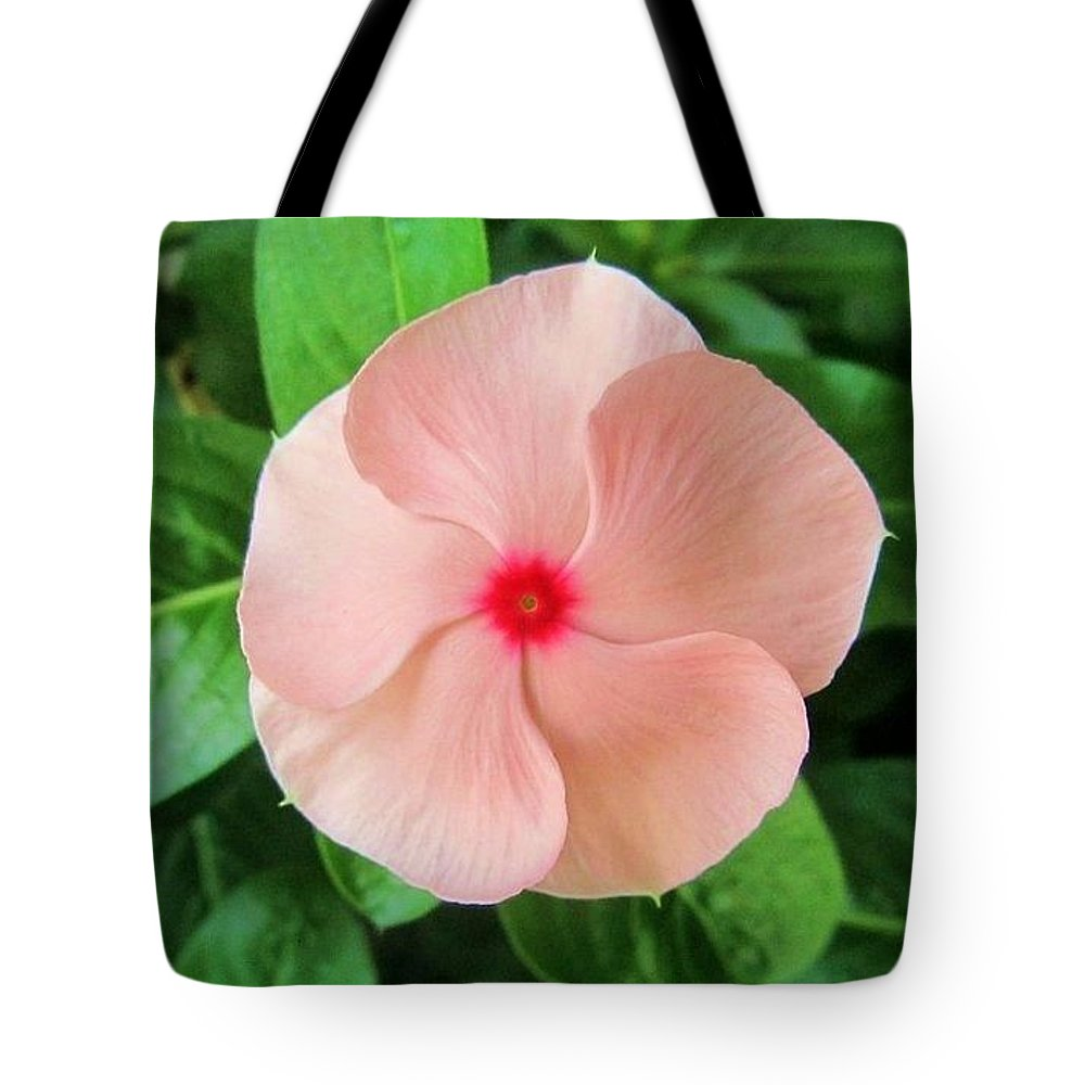 Pink Vinca Tote Bag featuring the photograph Pink Perfection by Deborah Lacoste